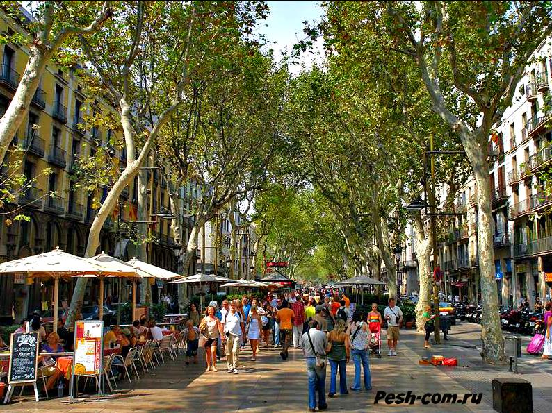 Барселона, Бульвар Рамбла, Барселона ком
