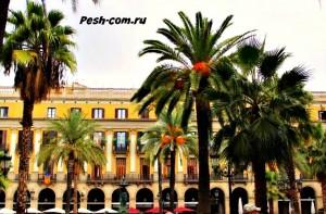 Барселона, Пласа Рейаль, барселона самостоятельно, барселона ком