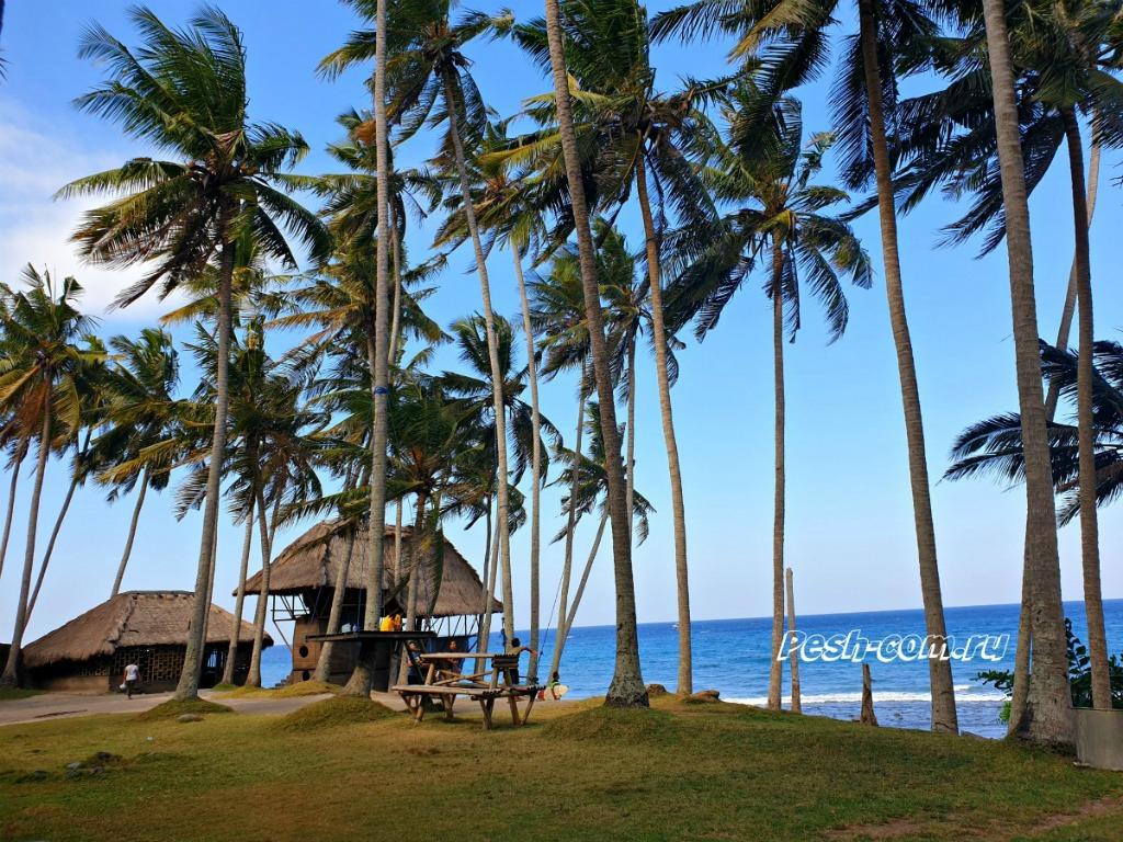 Плюсы отдыха на Бали